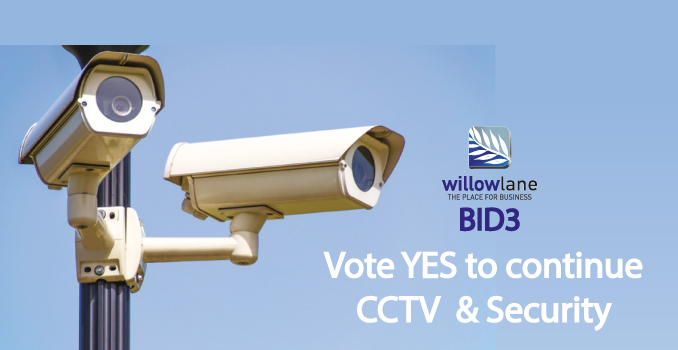 Willow Lane vote for CCTV